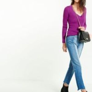 Purple Express Fitted V Neck sweater